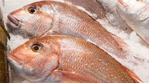 Big Heera Fish (Red Snapper Machli) 2Kg after cleaning (Next Day Delivery) (4725261500501)