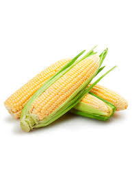 Corn Yellow bhutta 1 kg (4713963814997)