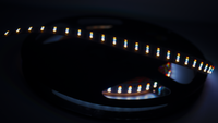 10MM RGBW High Density LED Strip - Per Meter