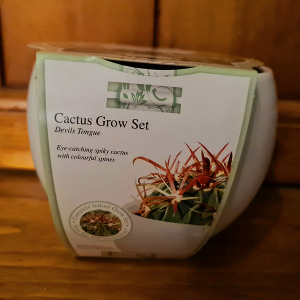 Cactus Grow Set - Devils Tongue
