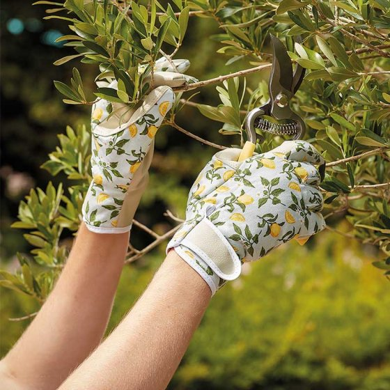 Smart Gardeners Sicilian Lemon Gloves Medium