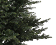 Load image into Gallery viewer, Grandis Fir Tree 120cm
