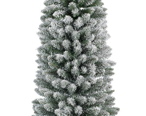 Snowy Pencil Pine Tree 120cm