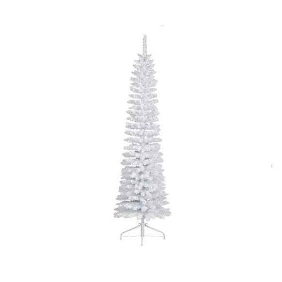 Snowy White Pencil Pine 120cm