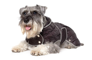 Quilted Dog Coat Black