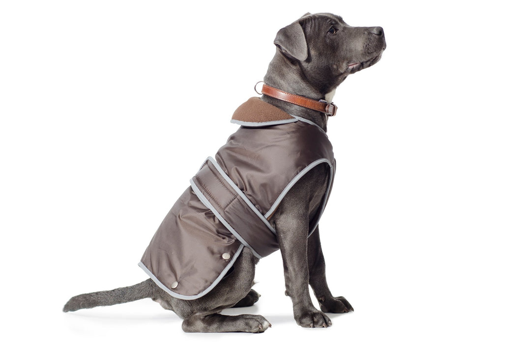 Stormguard Dog Coat Chocolate