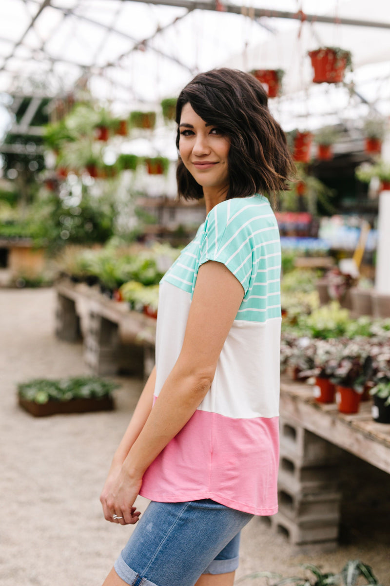 Sherbet Colorblock Top In Watermelon & Mint