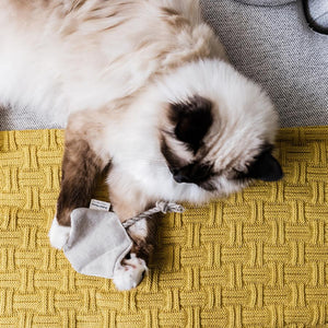 CAT TOY W/ CATNIP - STINGRAY