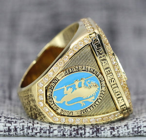 Alpha Epsilon Pi Fraternity Ring (AEPi) - Shine Series