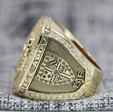 Load image into Gallery viewer, Sigma Alpha Epsilon Fraternity Ring (ΣΑΕ) - Shine Series