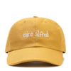 ORGANIC 6 PANEL CAP SP21 MADE IN USA