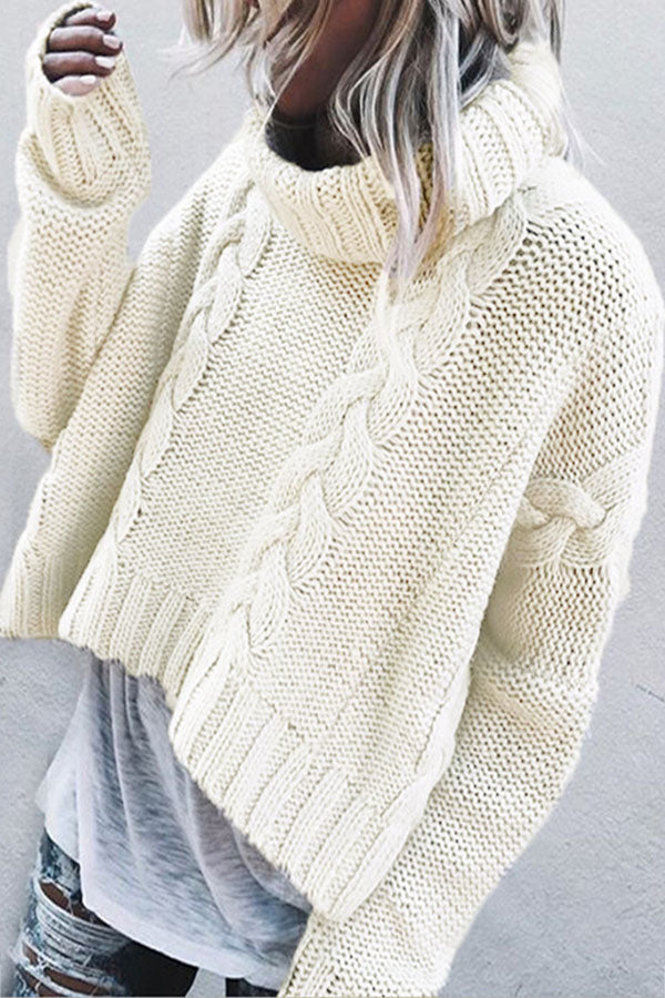 Holiday Trendy Solid Knitted Ribbed Turtleneck Tweed Cropped Sweater