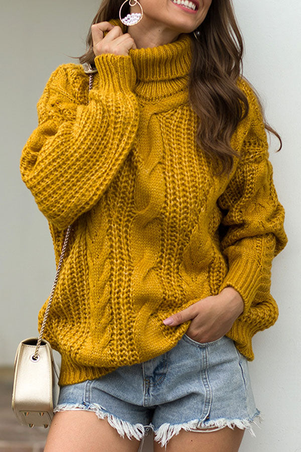 Holiday Solid Knitted Ribbed Tweed Turtleneck Fashion Sweater