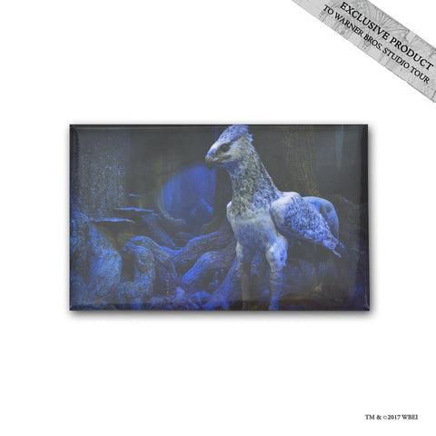 Forbidden Forest Buckbeak Photo Magnet