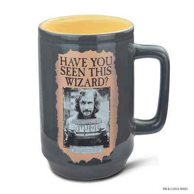Have You Seen This Wizard Mug
