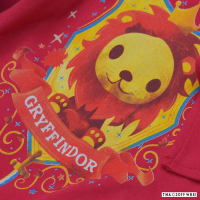 Gryffindor™ Mascot Babygrow and Bib close up