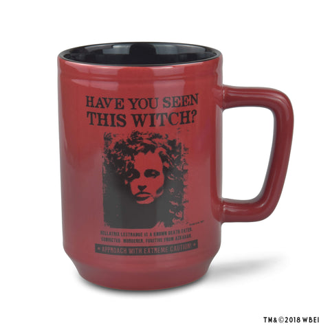 Have You Seen This Witch Mug