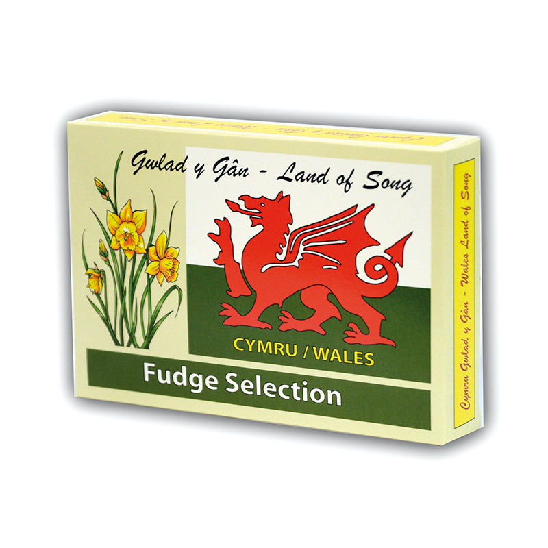 Gift box of welsh fudge