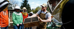 Beginning Beekeeping Course