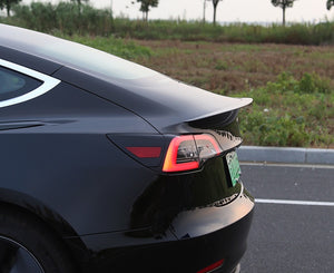 Model 3: Performance Spoiler (ABS+coating)