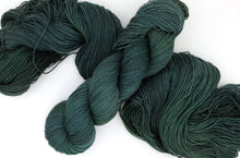 Load image into Gallery viewer, Topiary -- Solnit Base (Superwash merino/nylon; 4ply Fingering Weight)