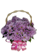 Basket of Mums