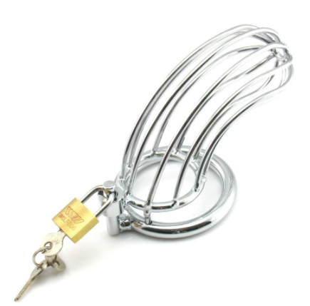 Stainless Steel 'Bird Cage' Chastity