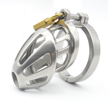 Hinged Steel Chastity Cage