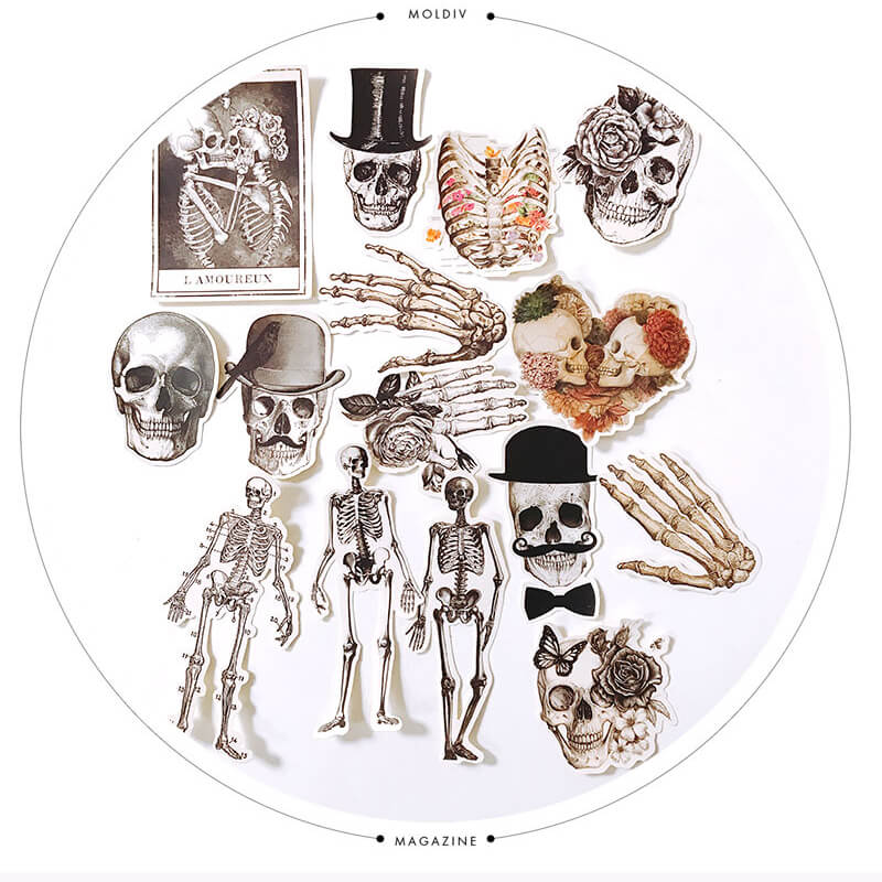 sexy bone human skeleton Skull Sticker