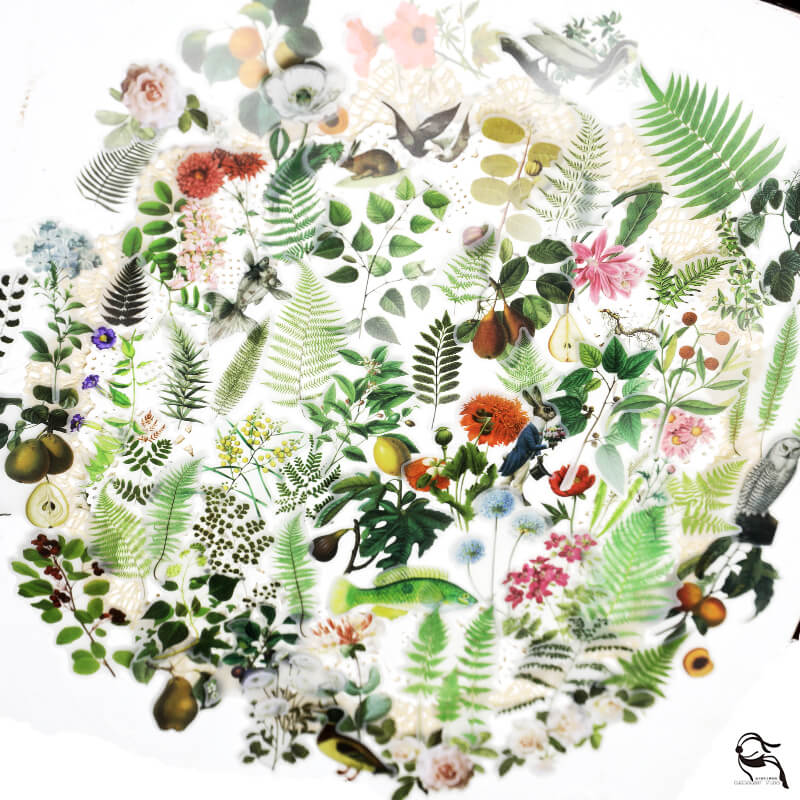 65pcs botanical plant and animal themed parchment texture stickers