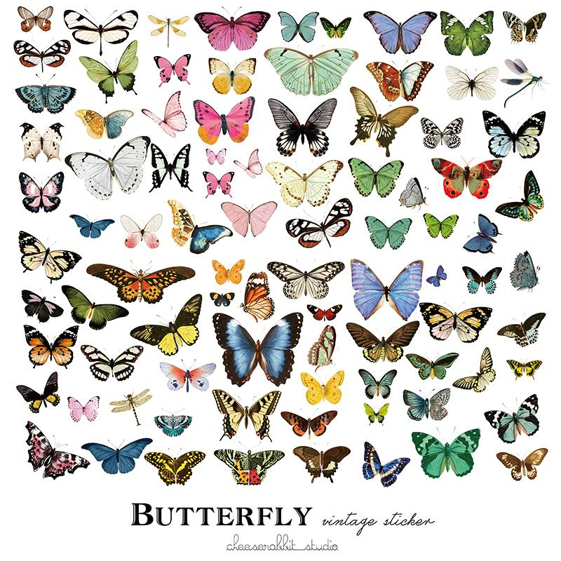 80 pcs Butterfly Sticker
