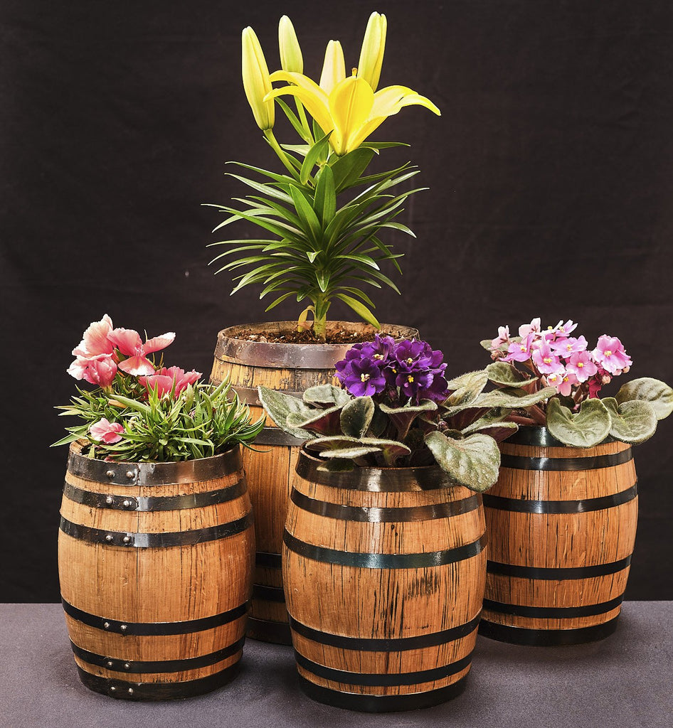 Baby Barrel Planters (Various Sizes) - Baby Barrels