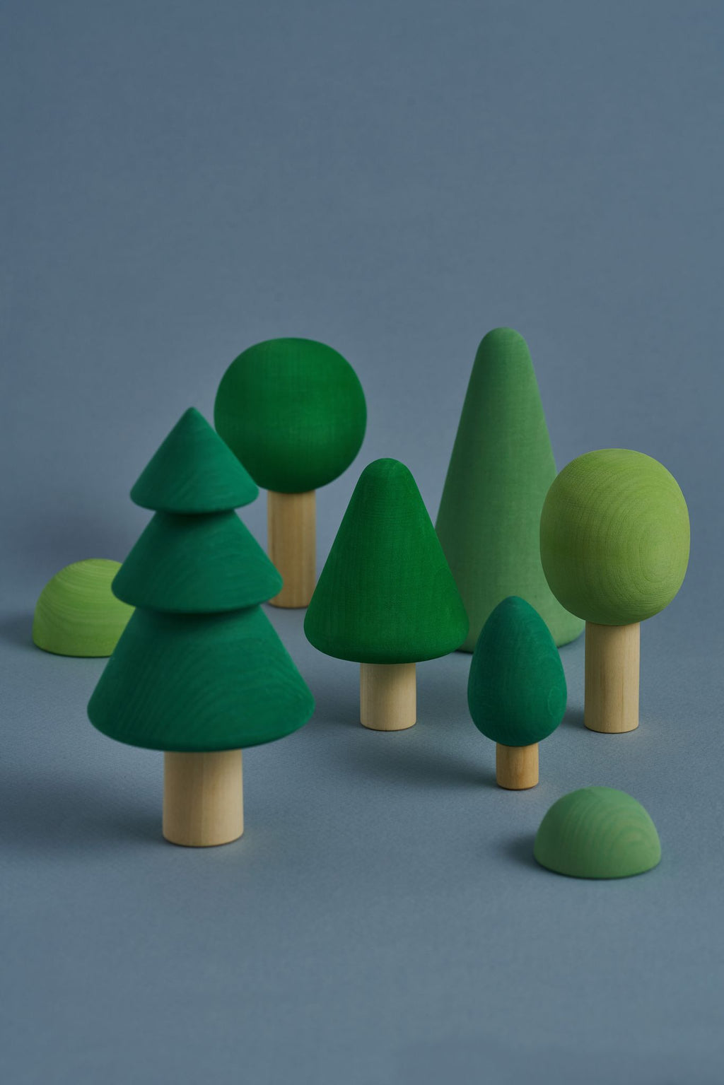 Forest - Wood Trees - Chicke