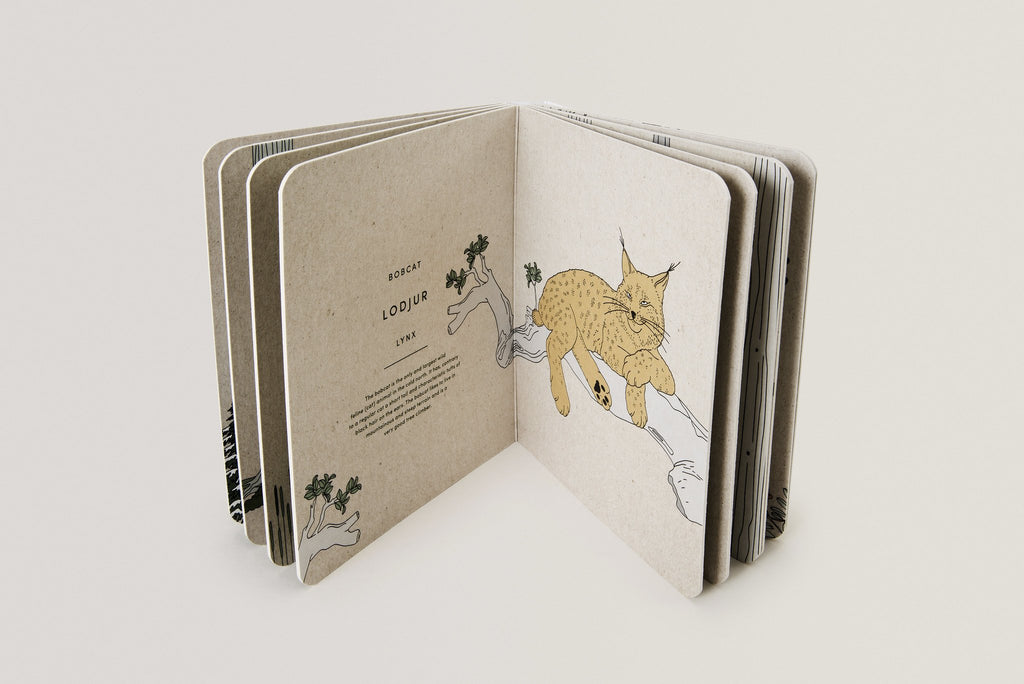 Woodland Animals Book