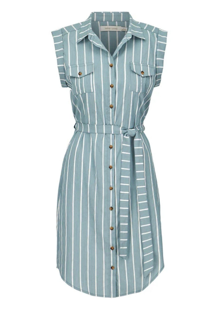 Bishop + Young Striped Button Front Dress-The Trendy Walrus