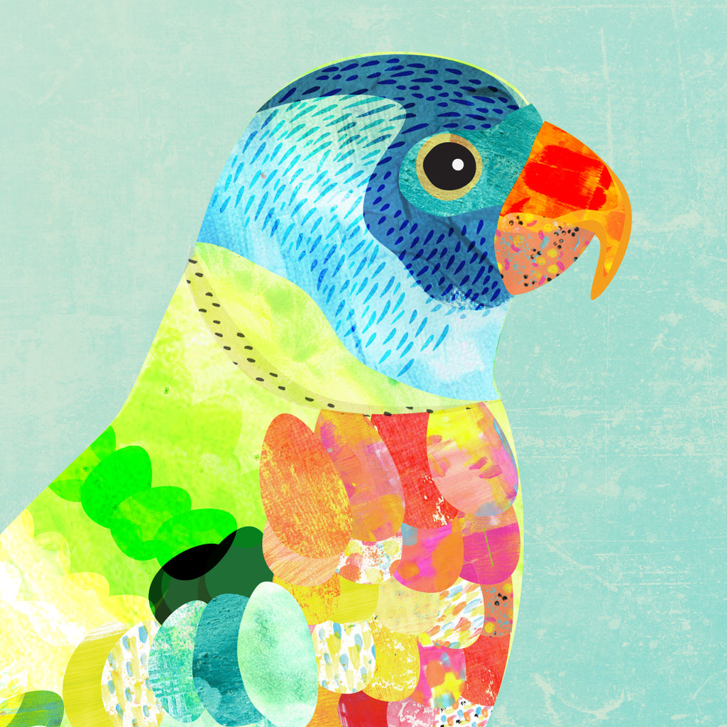 Colour Pop Rainbow Lorikeet Art Print - Braw Paper Co