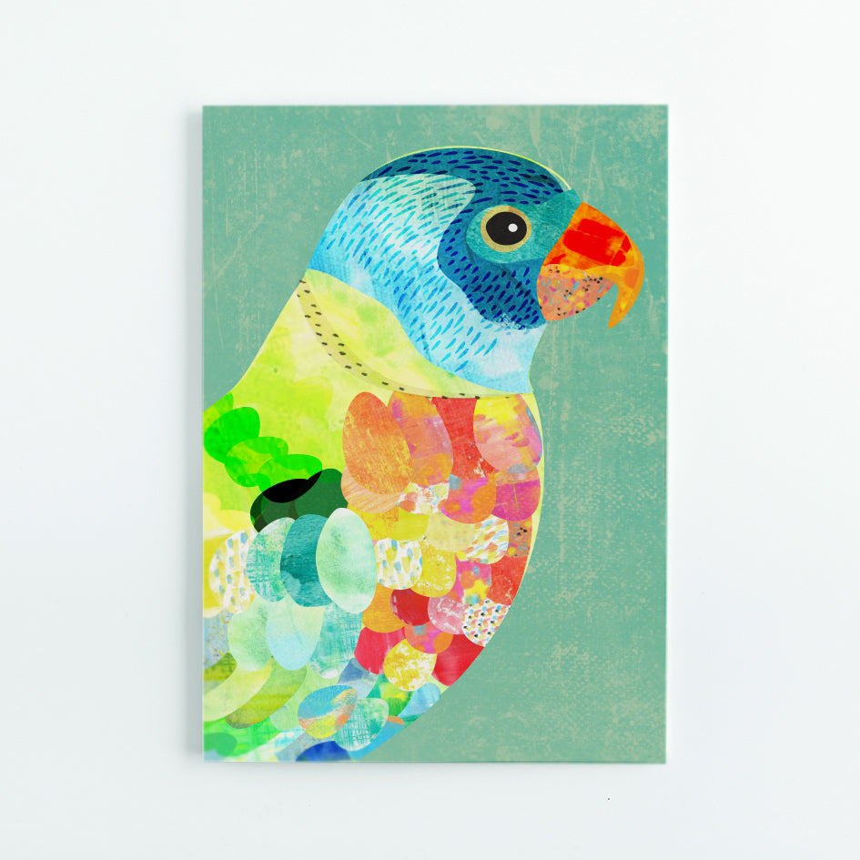 Rainbow Lorikeet A5 Journal - Braw Paper Co