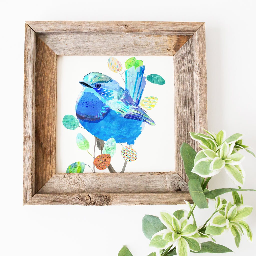Splendid Fairy-Wren Art Print - Braw Paper Co