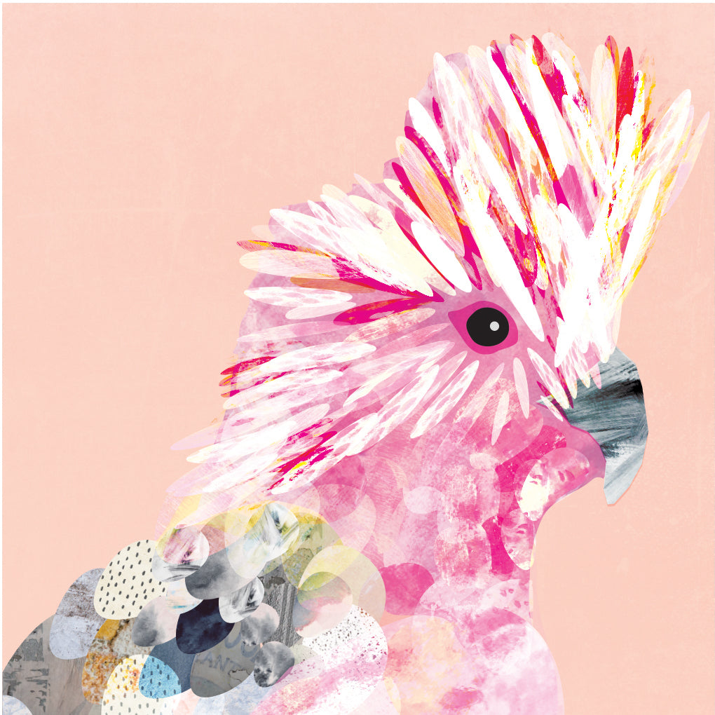 Colour Pop Galah Art Print - Braw Paper Co