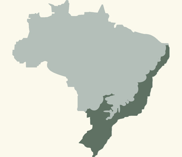 Brazil - Atlantic Forest