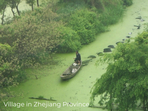 Polluted creek in China.