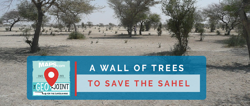 Geo-Joint: A Wall of Trees to Save the Sahel