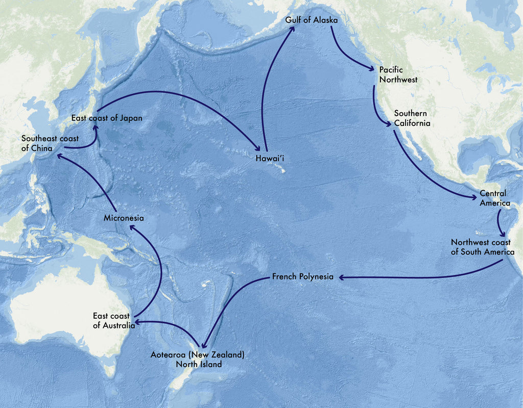 A map of the 2022 voyage, which will circumnavigate the Pacific Ocean.