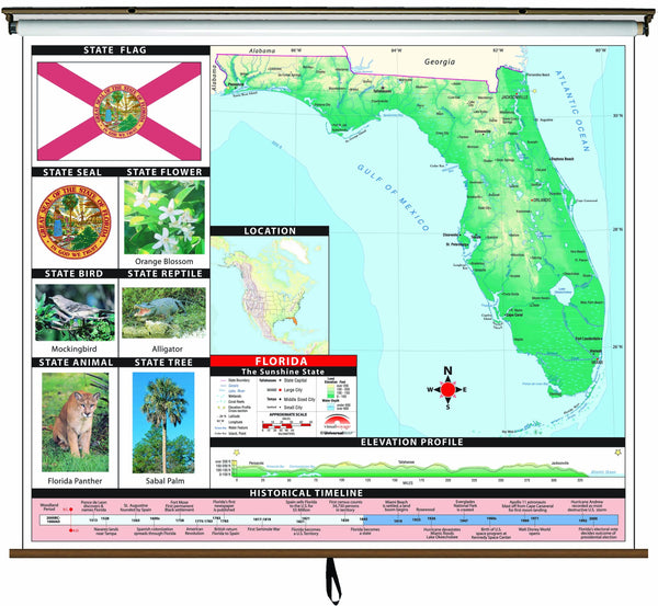 Florida State Primary Thematic Wall Map on Roller w/ Backboard