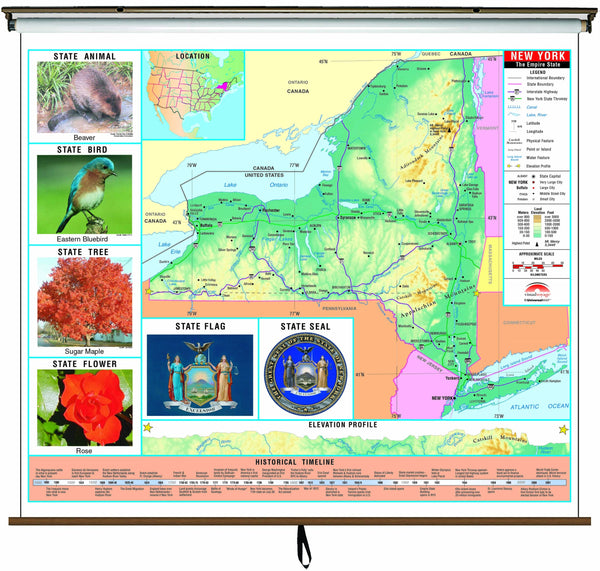 New York State Primary Thematic Wall Map on Roller w/ Backboard