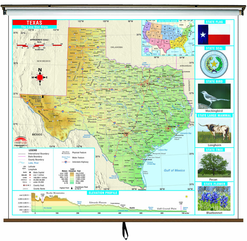 Texas State Primary Thematic Wall Map on Roller w/ Backboard