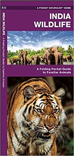 Cover of India-Wildlife-A-Folding-Pocket-Guide-to-Familiar-Animals-