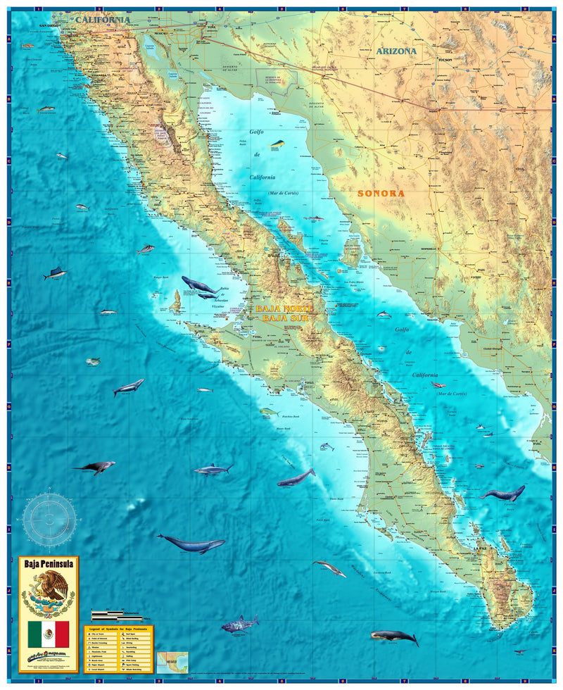 Baja Mexico Wall Map