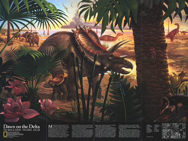 Dawn on the Delta Map 1993