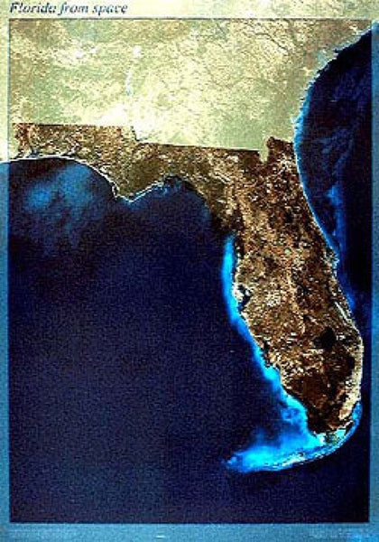 Florida Satellite Map
